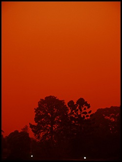 230909 Red Storm Rising Sydney Dust Storm by Nico Nelson